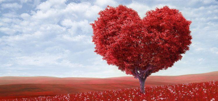 De magische formule van de liefde